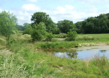 Thumbnail Land for sale in Shebbear, Beaworthy, Devon