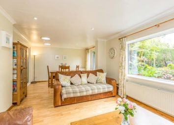 Thumbnail 4 bed semi-detached house for sale in Elmwood Road, Redhill, Surrey