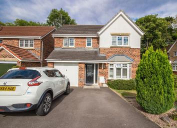 Thumbnail 4 bed detached house for sale in Moor View, Normanby