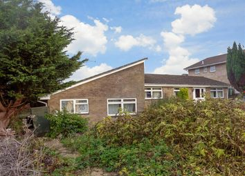 Thumbnail 2 bed bungalow for sale in Lansdown Gardens, Chillerton, Newport, Isle Of Wight