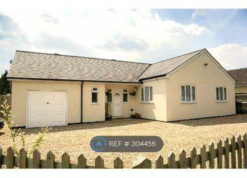 Thumbnail 4 bed bungalow to rent in Langley Hill, Tilehurst, Reading