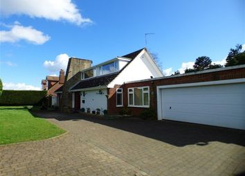 Thumbnail 3 bed detached house for sale in Chestnut Lane, Clifton Campville, Tamworth