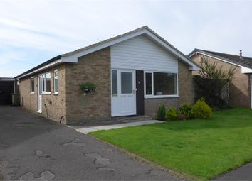 Thumbnail 3 bed detached bungalow to rent in Springfield, Skeeby, Richmond