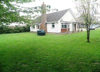 Thumbnail 3 bed detached bungalow to rent in Ashfield Road, Norton, Bury St. Edmunds