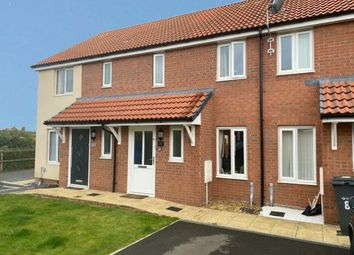 Thumbnail Terraced house for sale in Melrose Avenue, Exeter