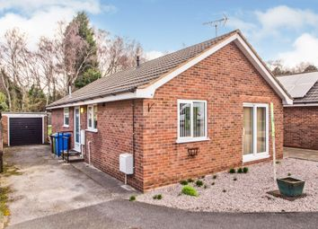 Thumbnail 2 bed detached bungalow for sale in Penzance Place, Mansfield