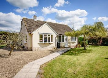 Thumbnail 3 bed bungalow for sale in Woolavington, Bridgwater, Somerset