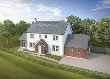 Thumbnail 4 bedroom detached house for sale in Weavers Lodge, Woodlands, Glasgow Road, Perth