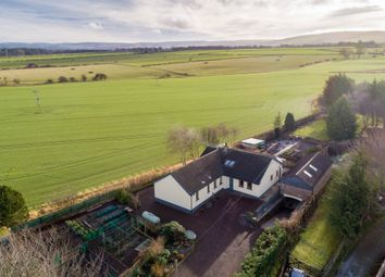Thumbnail 4 bedroom detached bungalow for sale in Sunview, Gifford Road, East Saltoun