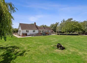 Thumbnail 5 bed detached bungalow for sale in Newchurch, Romney Marsh