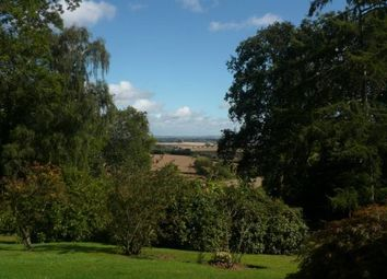 Thumbnail 1 bedroom semi-detached bungalow to rent in Foxes Bark, Callow, Hereford
