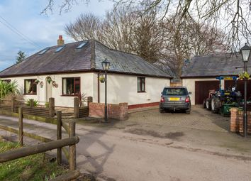 Thumbnail 4 bed equestrian property for sale in Gadlys Lane, Bagillt