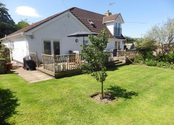 Thumbnail 3 bed detached house for sale in Western Road, Holsworthy