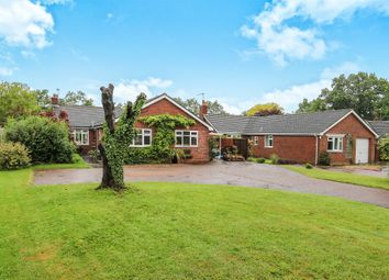 Thumbnail 4 bed detached house for sale in The Orchards, Laxfield, Woodbridge