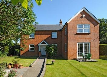 Thumbnail 4 bed detached house to rent in Impstone Road, Pamber Heath, Tadley