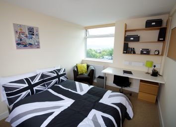 2 bed shared accommodation to rent in Broomgrove Road, Sheffield S10