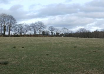 Thumbnail Land for sale in Land At Lluest Newydd, Llwyn-Y-Groes, Lampeter, Ceredigion