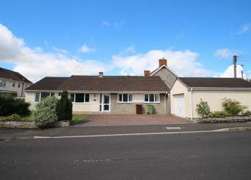 Thumbnail 4 bedroom detached bungalow for sale in Bramley Road, Street