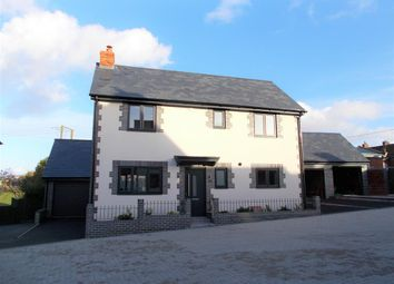 Thumbnail 3 bed detached house to rent in Weavers Close, Dilton Marsh, Westbury