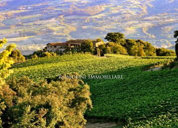 Thumbnail Farm for sale in Orvieto, Umbria, Italy