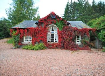 Thumbnail 1 bed flat to rent in Lodge Street, Crieff