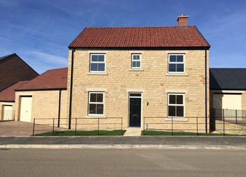 Thumbnail 4 bed detached house to rent in Creighton Place, Embleton, Northumberland