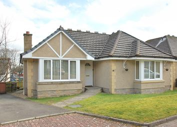 Thumbnail 3 bedroom detached bungalow for sale in Sneddon Place, Airth