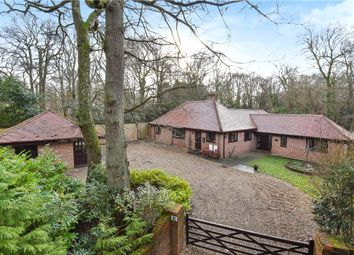 Thumbnail 4 bed bungalow for sale in Straight Mile, Ampfield, Romsey, Hampshire