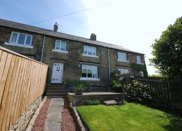 Thumbnail 3 bed terraced house for sale in Low Farm Cottages, Ellington, Morpeth