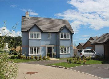 Thumbnail 3 bedroom detached house for sale in Shearwater Way, Seaton