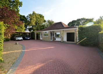 Thumbnail 5 bed bungalow for sale in Hornash Lane, Shadoxhurst, Ashford