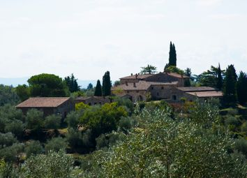 Thumbnail Farm for sale in Chianti, Castelnuovo Berardenga, Siena, Tuscany, Italy