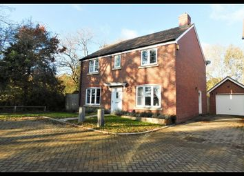 Thumbnail 4 bed detached house for sale in Farm Close, Southampton
