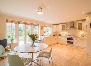 Thumbnail 5 bed semi-detached house for sale in Nether Street, London