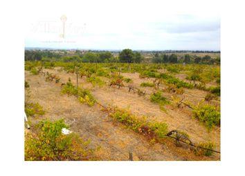 Thumbnail Land for sale in Mata Porcas, 8600-119 Luz, Portugal