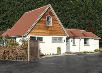 Thumbnail 4 bed detached bungalow for sale in Stud Green, Holyport, Maidenhead