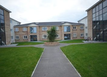 Thumbnail Studio to rent in Queens Court, Chichester Close, Rainham
