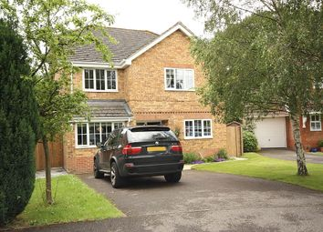 Thumbnail 4 bed detached house to rent in Ivydene, Knaphill, Woking