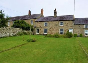Thumbnail 2 bed terraced house to rent in Demesne Cottages, Colwell, Northumberland.