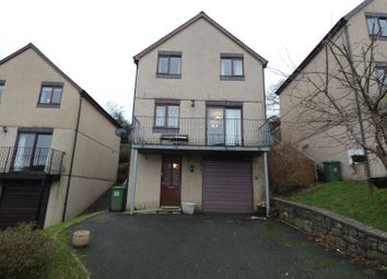 Thumbnail 3 bed detached house for sale in Maesbrith, Dolgellau