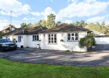 Thumbnail 4 bed detached bungalow to rent in Woodlands Ride, Ascot