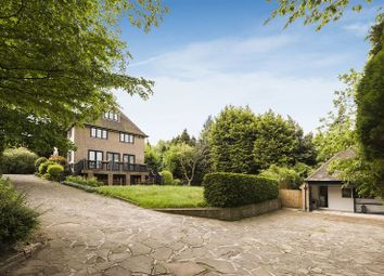Thumbnail 8 bed detached house for sale in Winnington Road, London