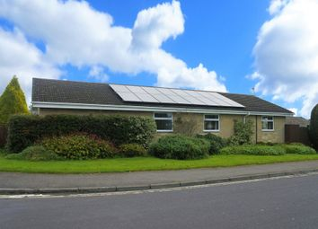 Thumbnail 4 bed detached bungalow for sale in St. Edwards Close, Shaftesbury