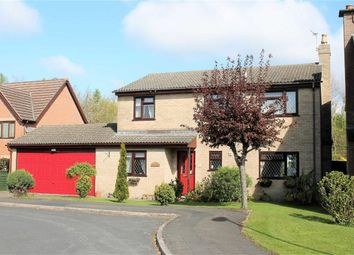 Thumbnail 4 bed detached house for sale in Wellmeadow, Staunton, Coleford