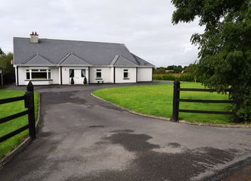 Thumbnail 5 bed bungalow for sale in Moanavoth, Rathvilly, Carlow