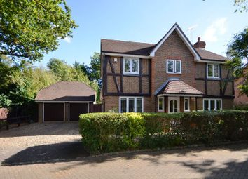 Thumbnail 4 bed detached house to rent in Roberts Grove, Wokingham