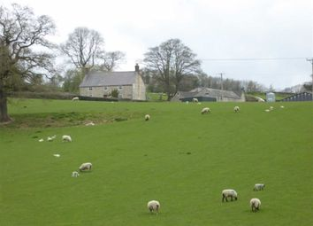 Thumbnail 4 bed farm for sale in Farm For Sale, Gwernaffield, Mold