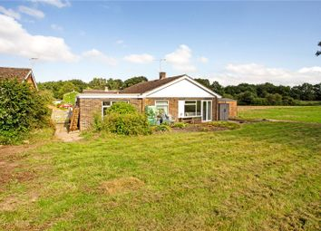 Thumbnail 3 bed bungalow for sale in Greenfields, West Grimstead, Salisbury, Wiltshire