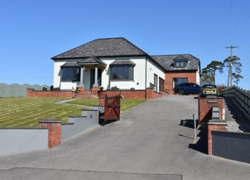 Thumbnail 4 bed detached house for sale in Capel Dewi, Carmarthen
