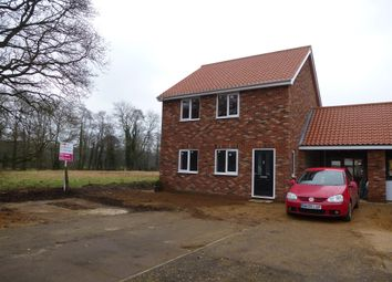 Thumbnail 3 bedroom link-detached house for sale in Richmond Place, Lyng, Norwich